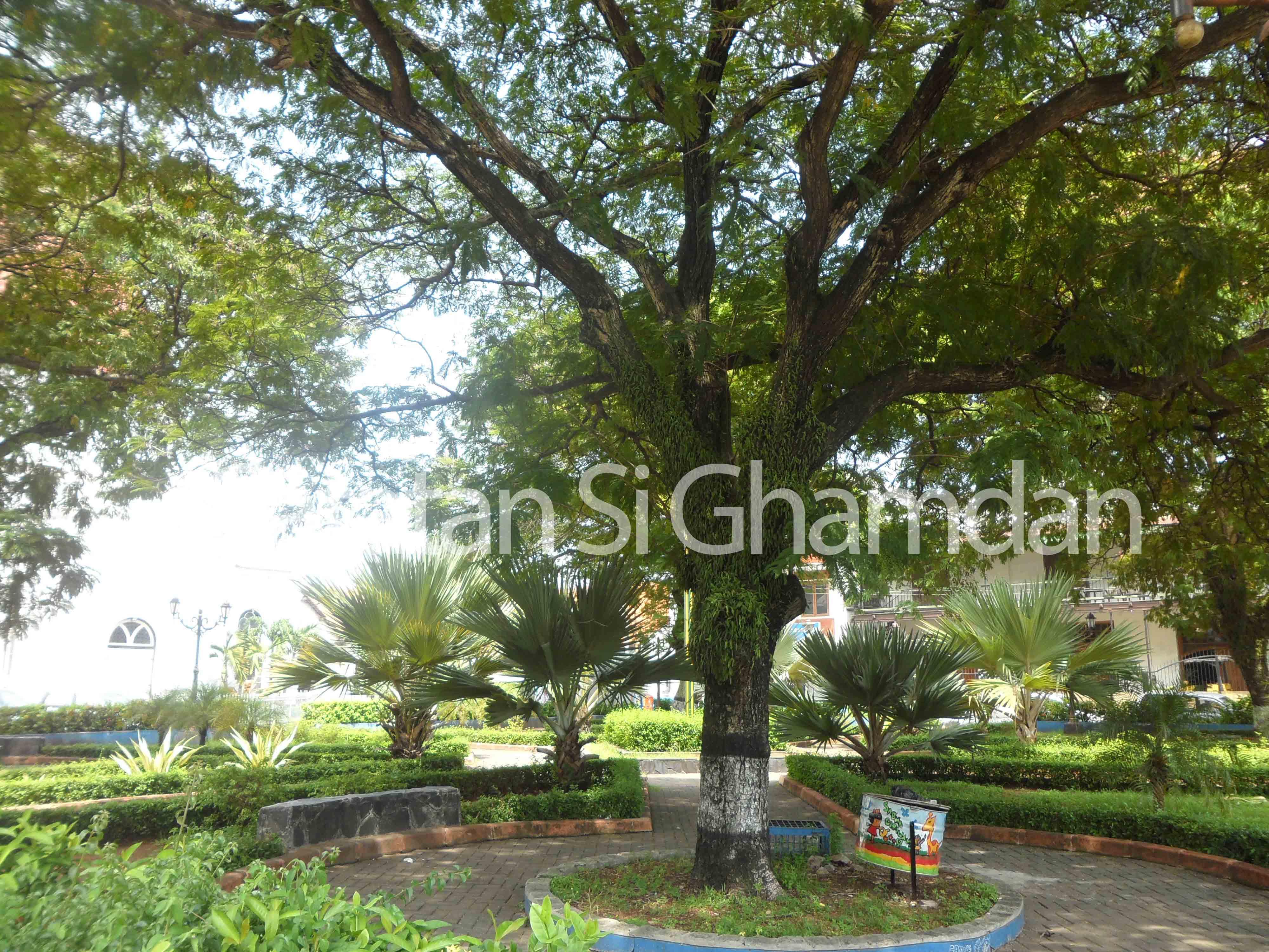 Menyiasati Ancaman Menggali Potensi Lebih Kota Suasana Taman Srigunting Kab