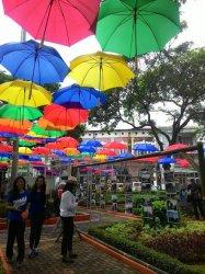Thania Heran Payung Taman Srigunting Kota Semarang Kab