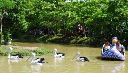 73 Tempat Wisata Semarang Wajib Dikunjungi Liburan Taman Luas 2