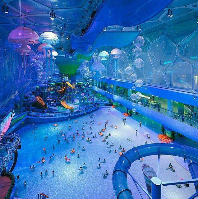 10 Passion Reborn Images Pinterest Water Parks Holiday Funny Pictures