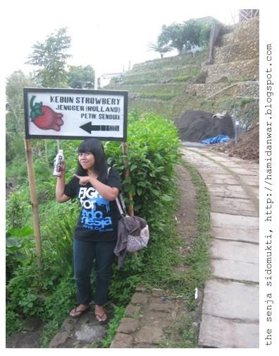 Traveling Umbul Sidomukti Senja 8 2011saya Rina Berkesempatan Mengunjungi Taman