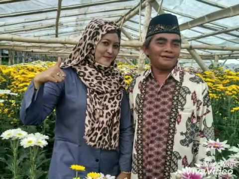 Belajar Berselfie Bunga Krisan Youtube Wisata Kampung Clapar Kab Semarang