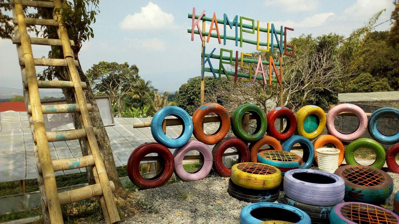 Beraneka Warna Bunga Chrysan Setiya Aji Flower Farm Kampung Tempat