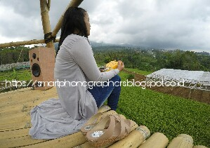 Kampung Krisan Clapar Wisata Warna Warni Bunga Smartphonegraphers Kkc Memiliki