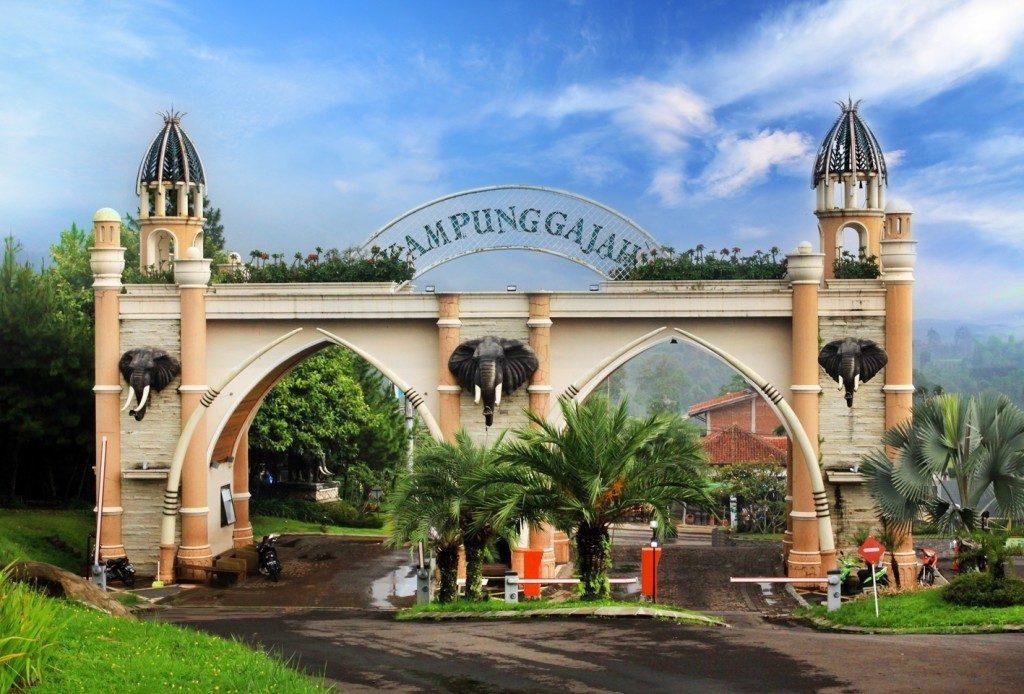 Limakaki Melihat Keindahan Bunga Krisan Wisata Kampung 5 Objek Bandung