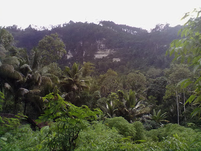 10 Foto Wisata Lereng Kelir Semarang Rute Lokasi Puncak Gunung