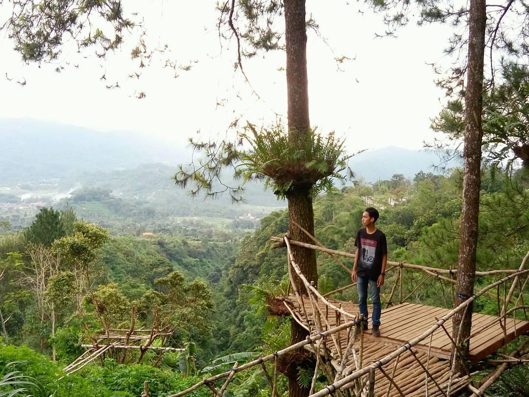 6 Tempat Wisata Semarang Hits Ngadem Alam Bantir Hills Spot