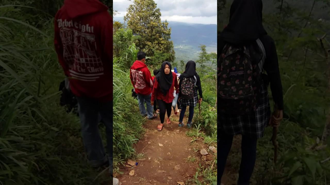 Wisata Lereng Kelir Bukit Gunung Brongkol Jambu Banyubiru Kab Semarang