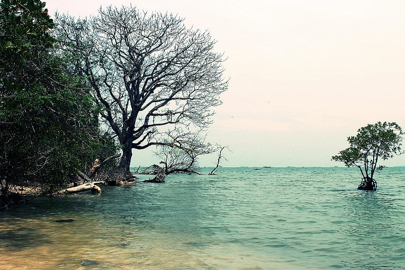 5 Destinasi Wisata Alam Indah Serang Tips Pulau Dua Terletak