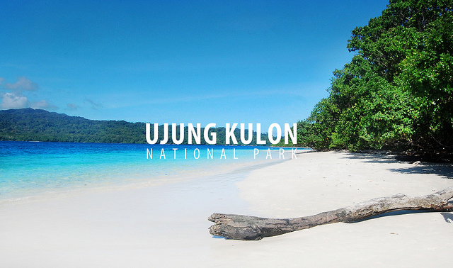 Destinasi Indonesia Wisata Pulau Banten Peucang Burung Kab Serang