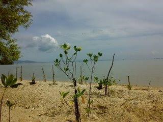 Dida Fasa Pulau Dua Biasa Disebut Burung Terletak Teluk Banten