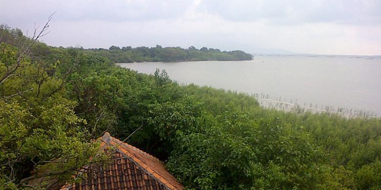 Gowes Banten Kompas Pemandangan Menara Pengamatan Pos Jagawana Pulau Dua