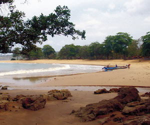 Pulau Manuk Wisata Bahari Aneka Macam Satwa Poskota News Bahkan