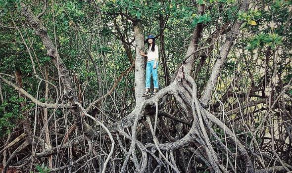 Sejarah Letak Cagar Alam Pulau Burung Instagram Shaznishazwani Kab Serang