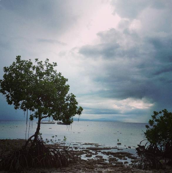 Sejarah Letak Cagar Alam Pulau Burung Wisata Kab Serang