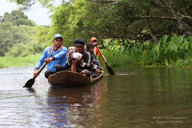 Seksi Konservasi Wilayah Keadaan Umum Kawasan Hutan Cacar Alam Rawa