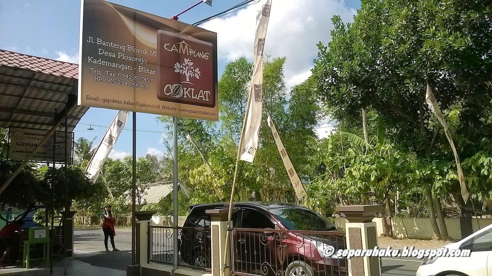 Manisnya Wisata Kampung Coklat Blitar Jawa Timur Separuh Kebun Cokelat