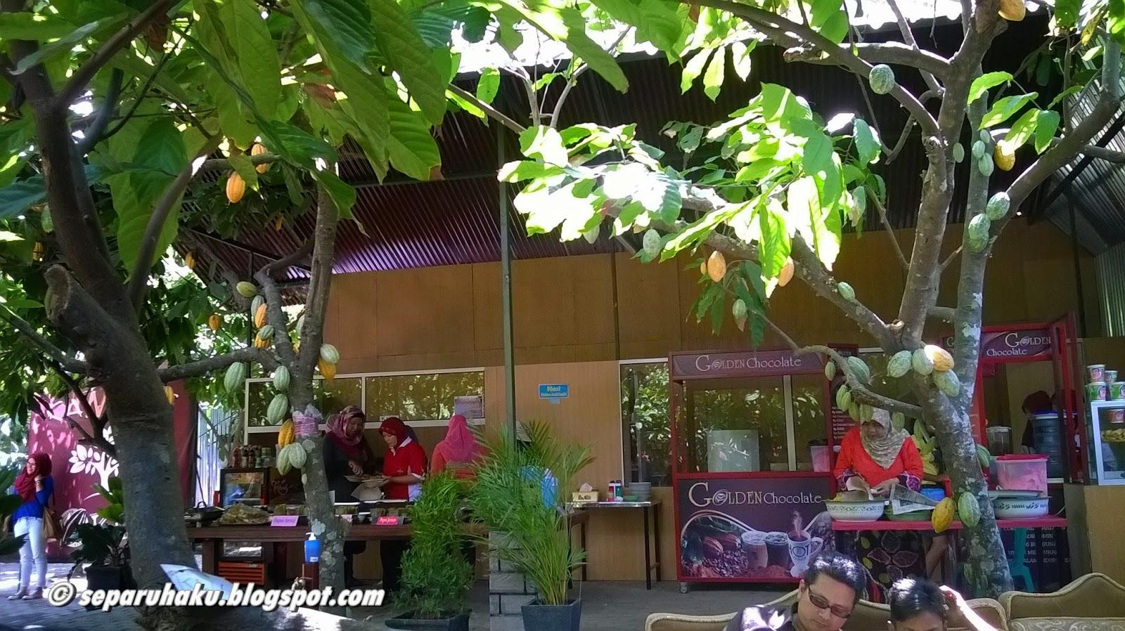 Manisnya Wisata Kampung Coklat Blitar Jawa Timur Separuh Kita Bisa