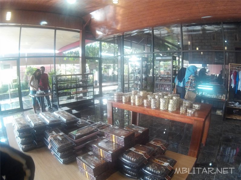 Wisata Edukasi Kampung Coklat Blitar Mblitar Net Jualan Produk Kebun