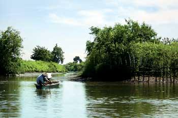 Pantai Kepetingan Wisata Sidoarjo Disebut Ketingan Menjadi Objek Kabupaten Termasuk