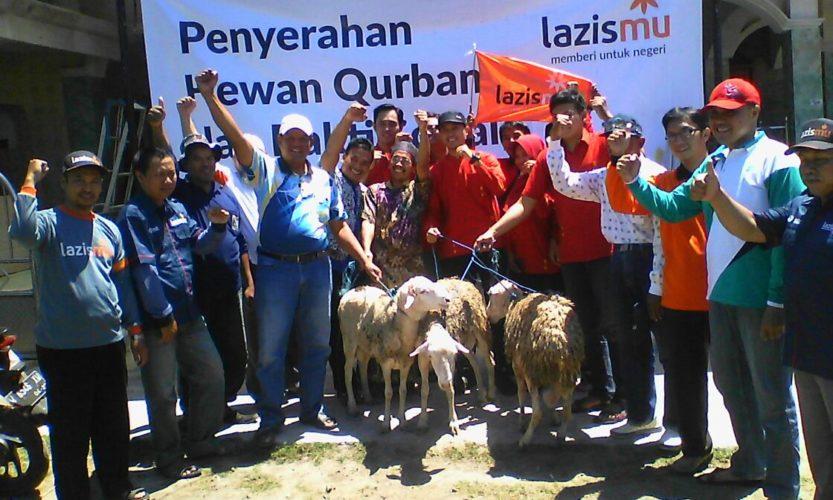 Sisir Desa Terisolir Hewan Kurban Lazismu Tiba Dusun Kepetingan 2