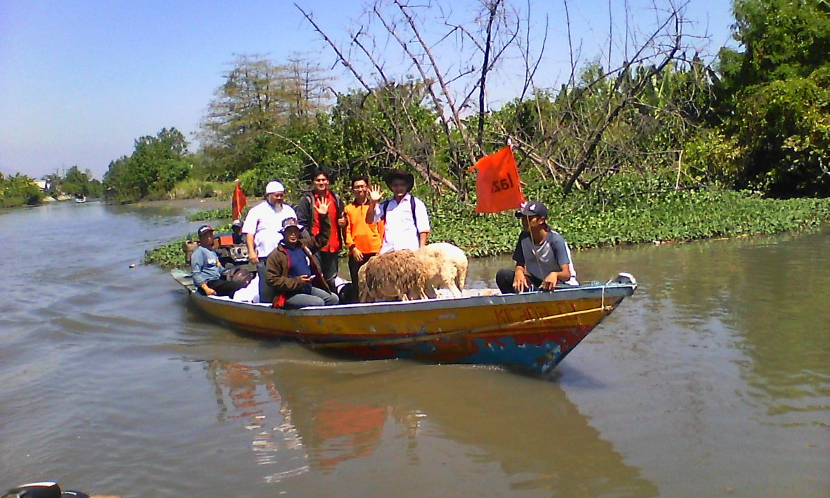 Sisir Desa Terisolir Hewan Kurban Lazismu Tiba Dusun Kepetingan Sidoarjo