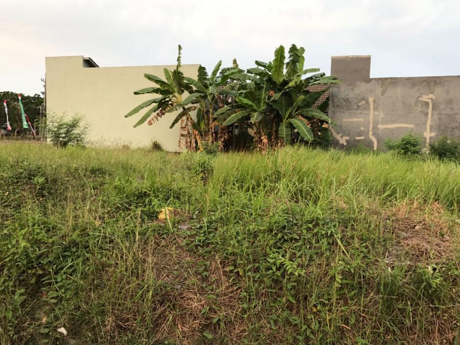 Tanah Dijual Kahuripan Nirwana Blok Raya 20 Sidoarjo Jatim Pazkul