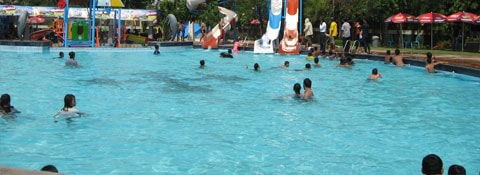 Kolam Renang Sidoarjo Info Harga Alamatnya Daftar Taman Air Permata