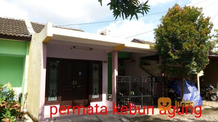 Rumah Murah Permata Kebonagung Sukodono Kab Sidoarjo Jualo Dijual 14471343
