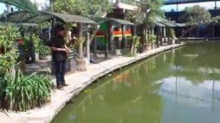 Info Harga Tiket Wisata Delta Fishing Sidoarjo Tanahair Tempat Pemancingan