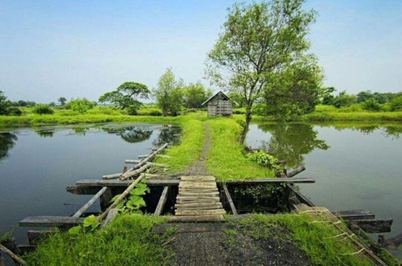 Sidoarjo Nggak Seserem Kamu Kira Nih 9 Tempat Wisata Spot
