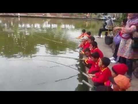 Wisata Mancing Murah Nyaman Delta Fishing Sidoarjo Youtube Tempat Pemancingan