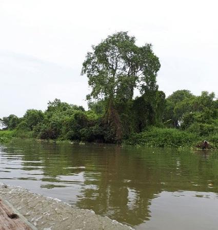 Tempat Wisata Sidoarjo Jawa Timur Wajib Kunjungi Pantai Kepetingan Kampoeng
