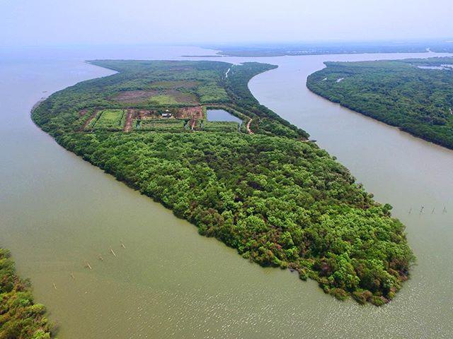 Pulau Sarinah Sidoarjo Keindahan Tengah Kepungan Lumpur Jawa Timur Wisata