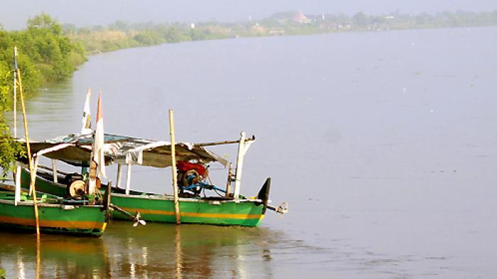 Subhanallah Pulau Sarinah Daratan Terbentuk Aliran Namanya Bagi Warga Desa