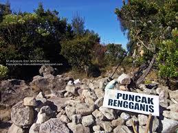 Gunung Argopuro Puncak Rengganis Situbondo Pusat Data Jawa Kelenteng Poo