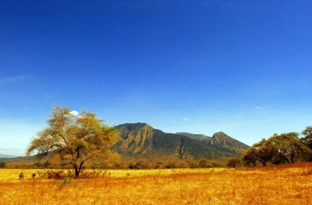 Spot Wisata Favorit Baluran National Park Situbondo Kelenteng Poo Tong