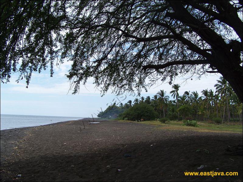 25 Tempat Wisata Terbaik Situbondo Jawa Timur Pantai Banongan Kolam