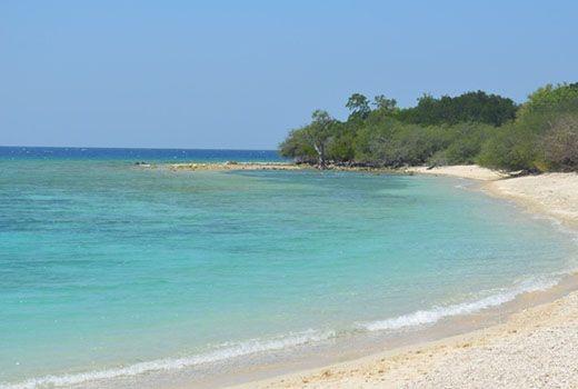 Pantai Balanan Situbondo 27 Tempat Wisata Jawa Kolam Renang Tirta