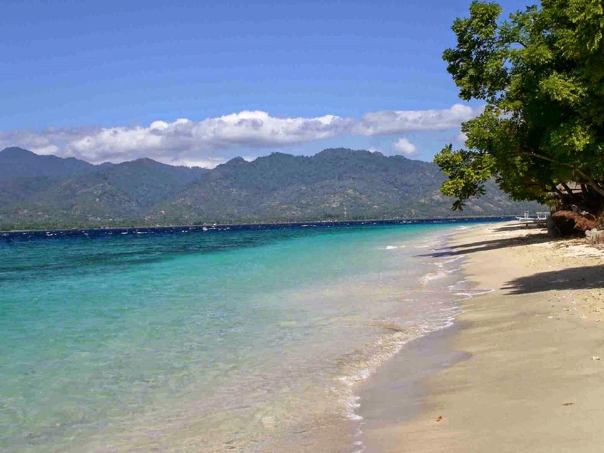 7 Tempat Wisata Situbondo Wajib Jumpai Aja Pantai Pasir Putih