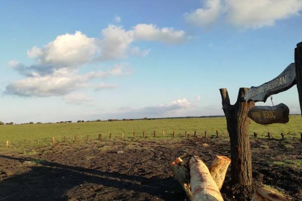 Baluran Destinasi Wisata Libur Lebaran Situbondo Taman Nasional Kabupaten Jawa