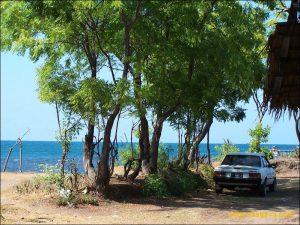 Destinasi Wisata Alam Pantai Pathek Situbondo Terakhir Jalur Sisi Timur