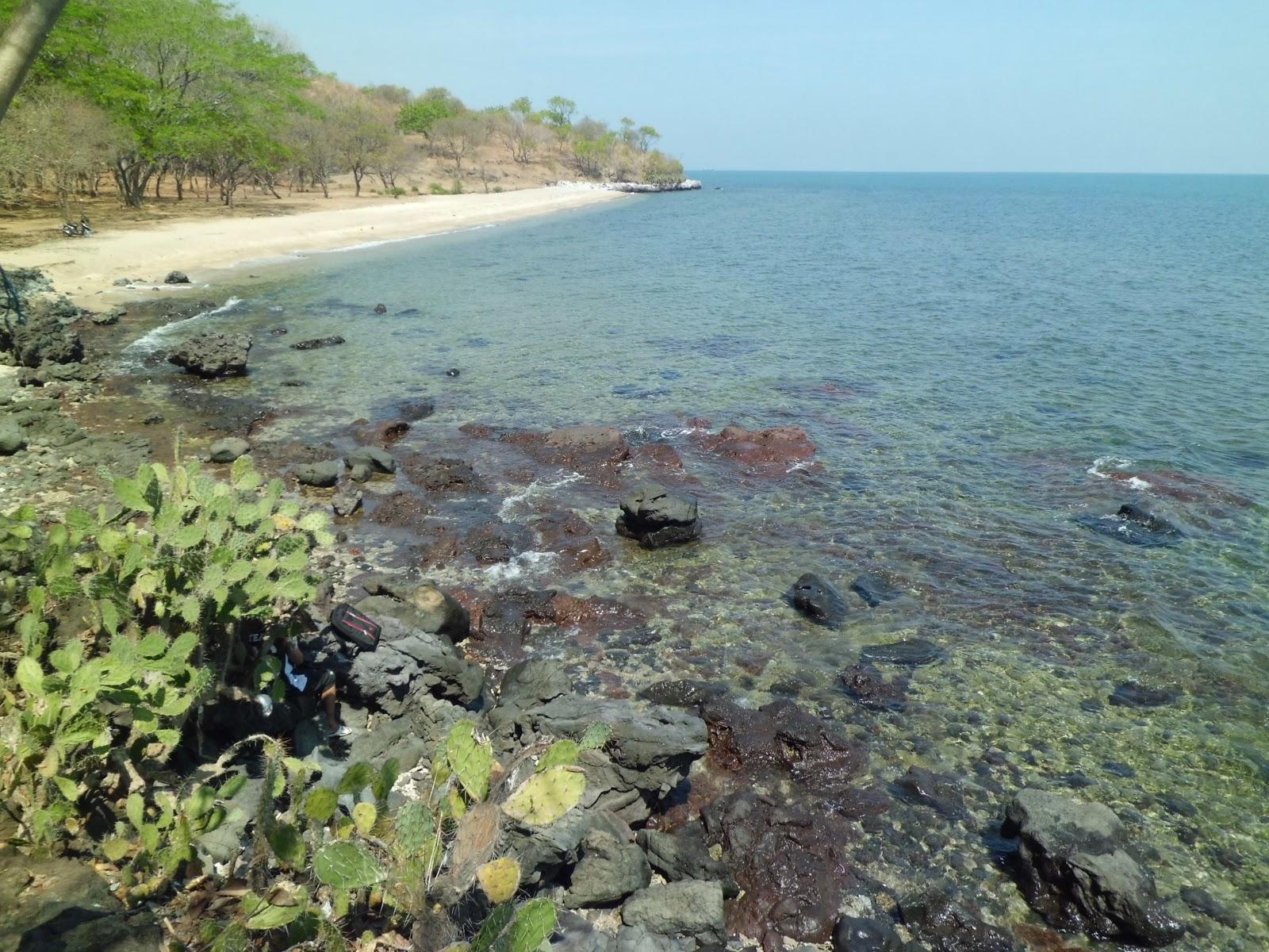 Eloknya 30 Tempat Wisata Africa Van Java Situbondo Jawa Timur