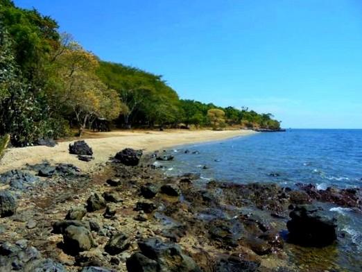 Pesona Keindahan Wisata Pantai Tampora Situbondo Daftar Tempat Alun Taman