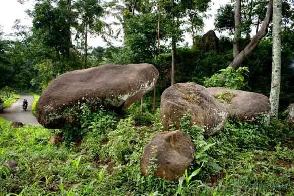 Seluk Beluk Situbondo Batu Kodok Besuki Menarik Dikunjungi Wisata Alun