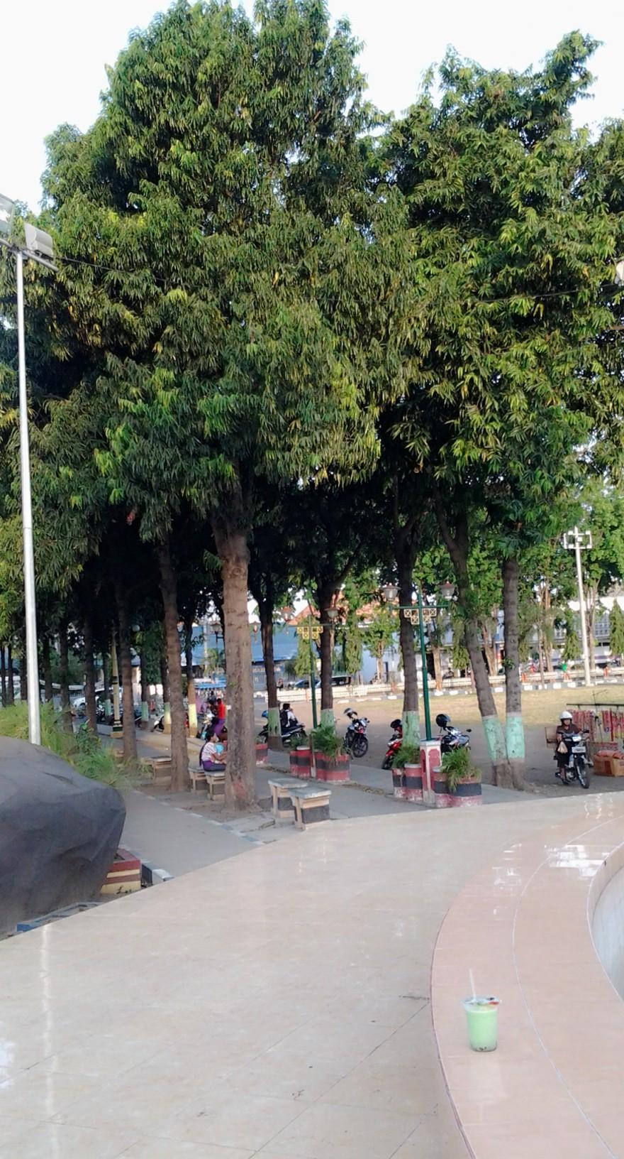 Taman Kota Alun Situbondo Hening Blog Fungsi Ekologis Terletak Ditengah