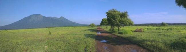 Taman Nasional Baluran Afrika Kecil Diujung Timur Pulau Jawa Situbondo