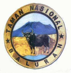 Taman Nasional Baluran Kabupaten Situbondo Wisata Jawatimuran Alun Kota Kab