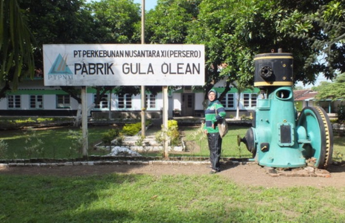 3 Pabrik Gula Ditutup Petani Situbondo Keberatan Citra Indonesia Wisata