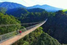 Pabrik Gula Olean Situbondo Trip Jalan Jembatan Gunung Sukabumi Wisata